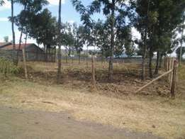 1/4 Acre vacant plot for sale in Soilo