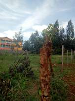 PRIME plot for sale Kiamwathi Nyeri town