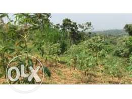 9squaremiles of land on sale in Kayunga-bugerere each acre is at 2.5m
