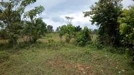 Titled Plot of 80ftby50ft in seeta joggo at 13m