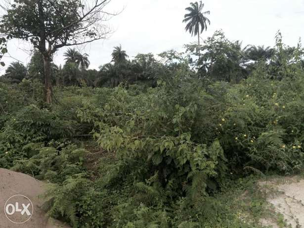 Lands for sell 100 by 100, 50 by 100, location is Akpabuyo LGA Calabar - image 4