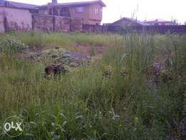 Plot measuring 656m2 with CofO for sale in ogolonto, ikorodu