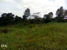 1 acre for sale in 87/kinoo
