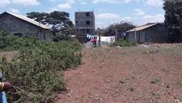 2 Great 1/8(50*100) plots for sale Mwiki-Kasarani with title