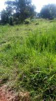 Titled Half acre for quick sell on top hill at Nakawuka Kajjanise