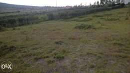 Machakos Junction plots 50x100. Chumvi. Reduced to clear