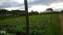 Very prime Plot at Lanet Ndege area (50 x 100)
