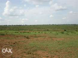 Kenya Safehomes 200 acres for sale in Kabarak, Rongai (ngonga