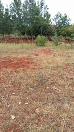 Quick sale 1 acre second row from mati rd meru county. Huruma - image 2