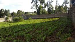 1/4 acre Plot for development with a perimeter wall