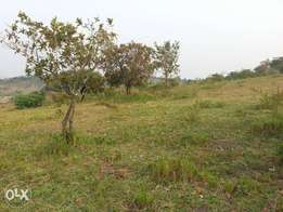 400acres of millo land on sale in kiboga each is at 2.5m