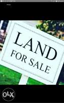 Buy our estate lands with documents in lekki price rages from 800000