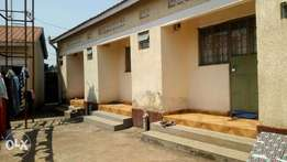 Executive double rooms are available for rent in kireka