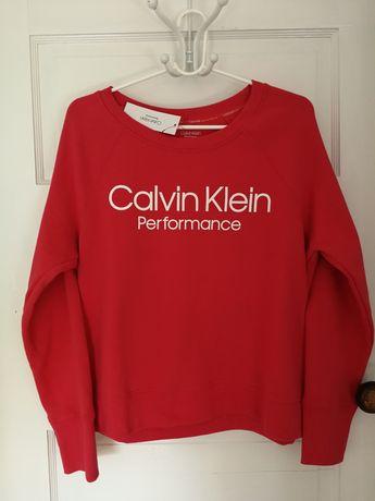 Calvin Klein Ubrania w Częstochowa OLX.pl