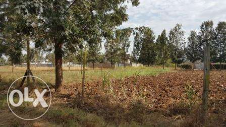 Kiambu Kamiti road Mugumo 1/4 Acre Plots for Sale Nairobi CBD - image 2