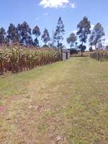 Plot for Sale at Cheplaskei