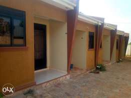 Executive double rooms are available for rent in bweyogerere