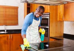 Maltec Cleaning Painting & Fumigation Service Surulere