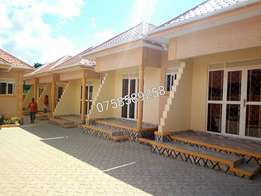 brand new self contained double rooms in kisasi town near road at 400k