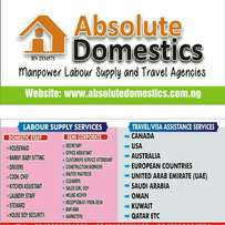 Labour Supply Services