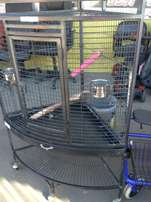 parrot s cage