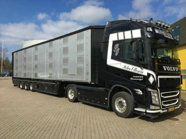 Volvo FH500 with Finkl Trailer - 2016