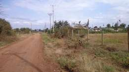 1/2 acre prime plot in Ruiru Mugutha