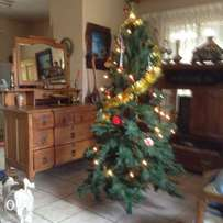 X mass tree for sale
