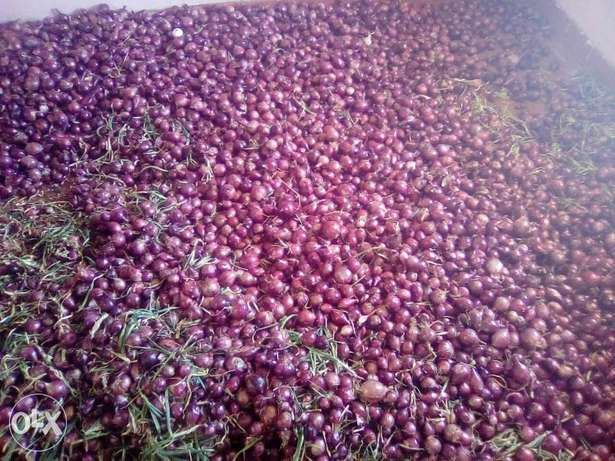 Onions for sale .dry and in store ready for selling. Utawala - image 2