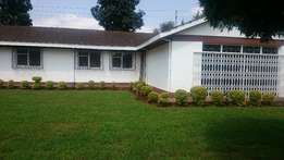 4 bedroomed bungalow to let in loresho.