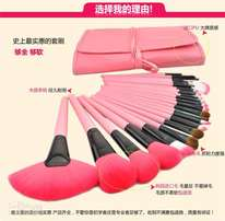 Make Up Brush-24 Piece Beauty On The Go