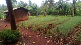 3/4 acre land meru - Kithoka
