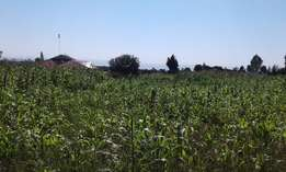 1 acre at njoro rumwe tamarc at 4m