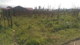 Plot for sale in Ngata,400mts from highway