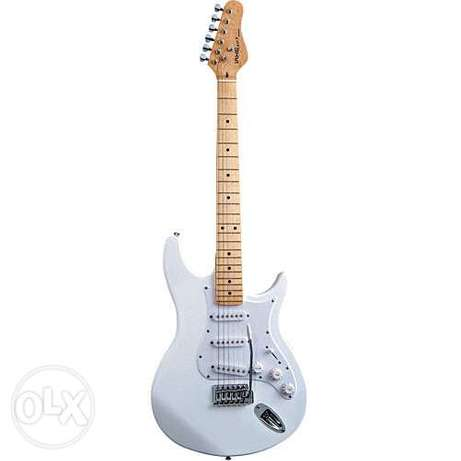 Electric Guitar with USB