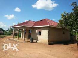 House for rent near Gulu University