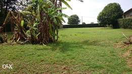 Prime Half Acre Land For Sale In Runda