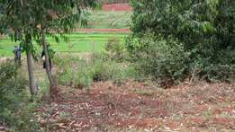 Beautiful ½ Acre Plot behind Rwambiti Secondary School, Kirinyaga.