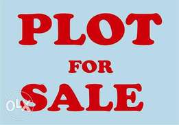 Prime 1/8 acre plot in Langas opposite St.Elizabeth school