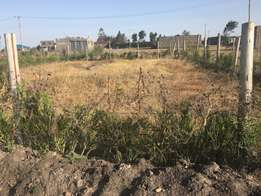 Prime plot for sale 40x80