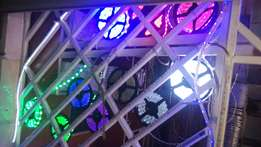 Dealing with wholesale of LED snake lights both AC and DC all colours