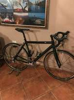 Scott 10 speed ultegra