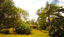 Plot for sale in Parklands ideal for Apartments or Office Blocks