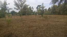2 prime acres pure red soil for sale at Makutano junction