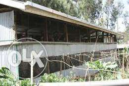 Poultry sheds to house 2000 chicken layers for sale