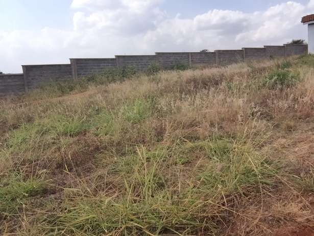 1/2 acre residential plot Near Tatu City in a Gated community Upper Parklands - image 3