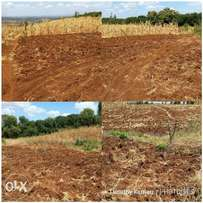 60*100 plot for sale at Kenol, Muranga county. Approximately 2.8 kms o