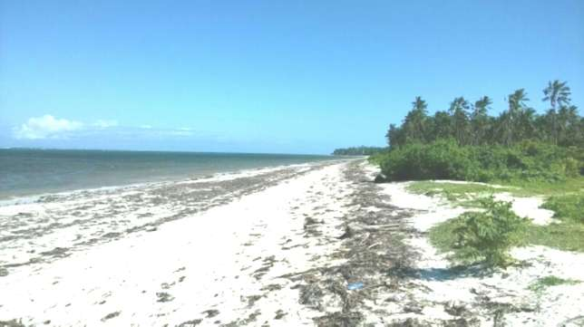 7 Acres Beach Plot For Sale in North Coast Mombasa With Clean Title Kilifi - image 2