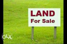 10 hectares of land at karsana North for sale