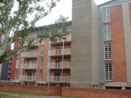 A modern Bachelor apartment to let in Sunnyside just by Loftus
